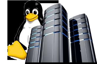 web-hosting-chennai